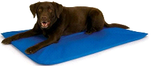 Enhanced KH1790 Large Indoor or Outdoor Cool Bed III Blue Dog Pet Pad Bed