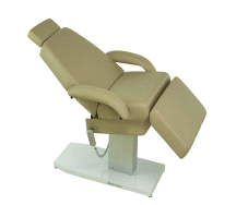 Touch America EMPRESS Professional Spa Treatment Convertable Chair/Table