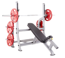 Steelflex NOIB Olympic Incline Weight Lifting Bench