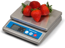 Salter Brecknell 6030 Portion Control Stainless Steel Food Scale