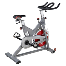 Sunny SF-B1110S Indoor Cycling Exercise Bike Silver