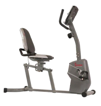 Sunny Magnetic Recumbent Exercise Bike Easy Adjustable Seat SF-RB4806